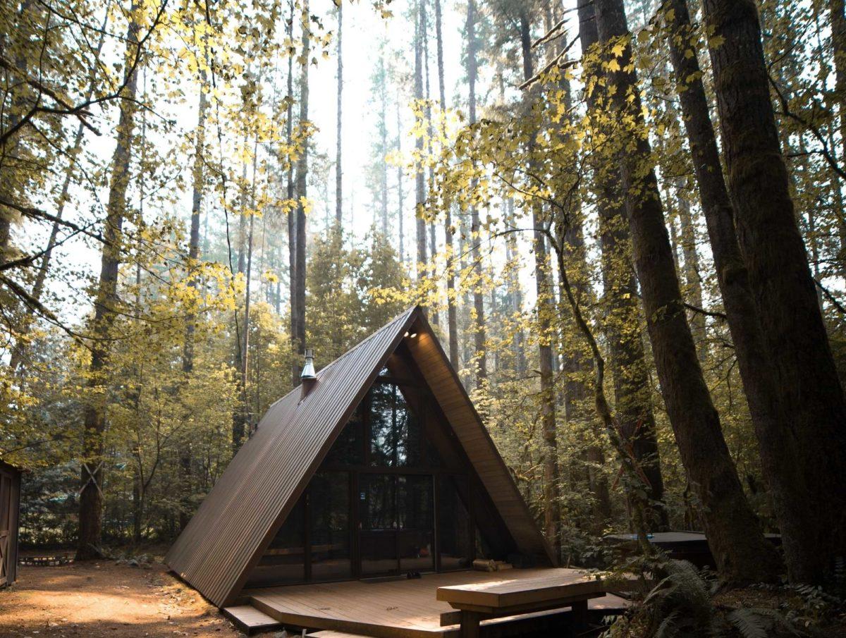 Ecolieu en forêt